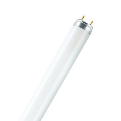 Флуоресцентни тръби T8